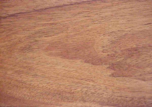 Venta de maderas nacionales - timbó
